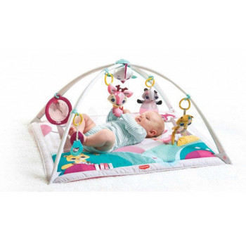 Palestrina Tiny Princess 2 in 1